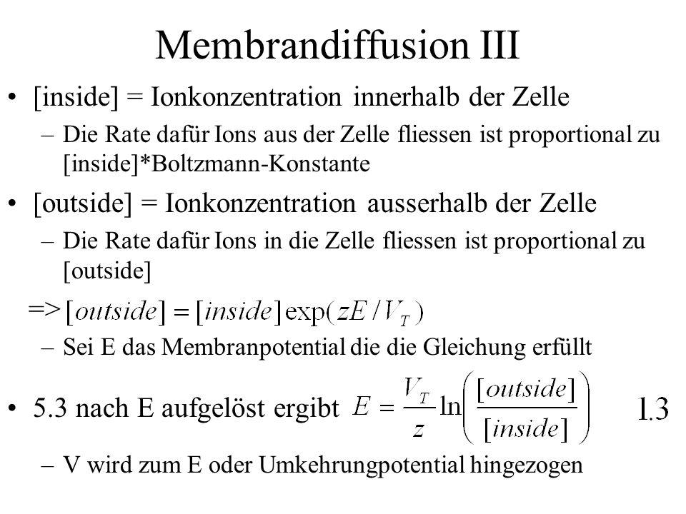 Membrandiffusion III [inside] = Ionkonzentration innerhalb der Zelle